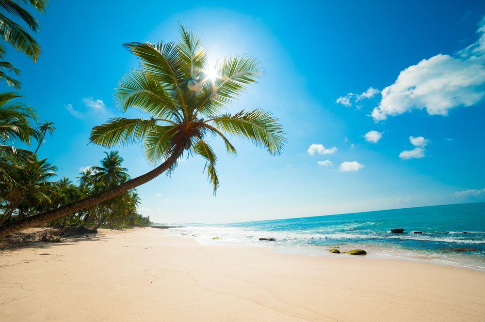 Soe wie dieser unberührte Traumstrand in Sri Lanka stellt man sich das paradies vor.